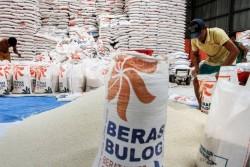 Ada 6.000 Ton Beras Rusak di Gudang Bulog Kabupaten OKU