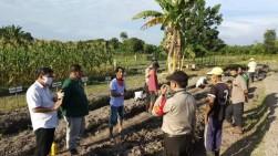 Aliansi Petani Gambut Riau: Badan Restorasi Gambut Hadir Bantu Petani di Riau