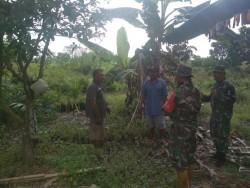 Babinsa Koramil 07/kampar Patroli Karlahut untuk Permudah Identifikasi Pemilik Lahan