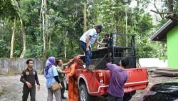 BBKSDA Riau Lepasliarkan Satwa Lindung