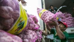 Bulan Ini Indonesia Impor 100 Ribu Ton Bawang Putih Asal China