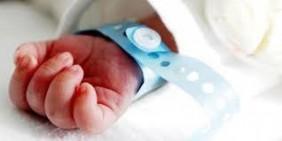 Dua Bayi Asal Pekanbaru dan Kampar Terpapar Covid-19