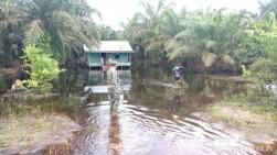 Dua Minggu Direndam Banjir, Masyarakat Bonai Darussalam Butuh Bantuan