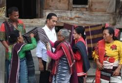 Presiden Jokowi Harap Danau Toba Jadi Tempat Wisata Paralel