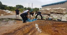Puluhan Ton Gula dan Beras Tak Layak Konsumsi Dimusnahkan Bea Cukai Batam