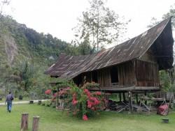 Rumah Lontiok di Ngarai Sianok Bukittinggi Dijual, Bahan Kayu Sejak Tahun 1870 Silam