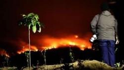 Satgas Karhutla Riau Akan Berakhir Oktober