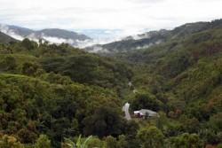 Taman Nasional Kerinci Seblat Rawan Jadi Lokasi Perburuan Satwa Liar